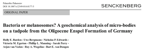 geochemistry research papers Organic geochemistry is a peer-reviewed scientific journal published by elsevier  covering research on all aspects of organic geochemistry  according to the  web of science, the journal's two most cited papers (as at june 22, 2013) are.